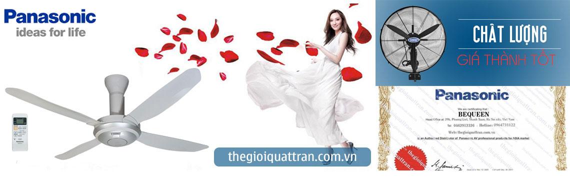 quat-tran-quat-thong-gio-bannert